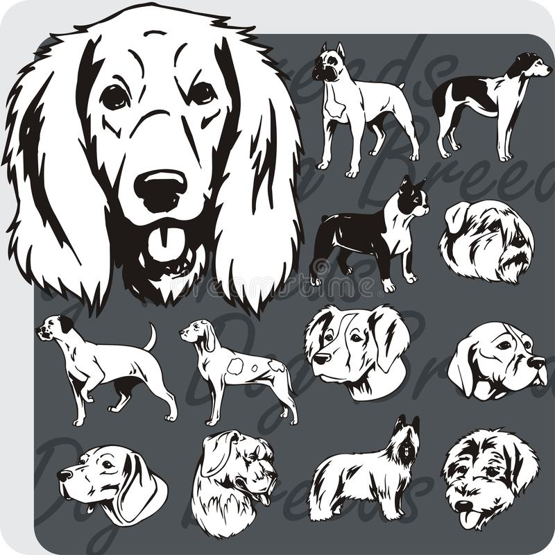 Razze del cane - insieme di vettore illustrazione di stock