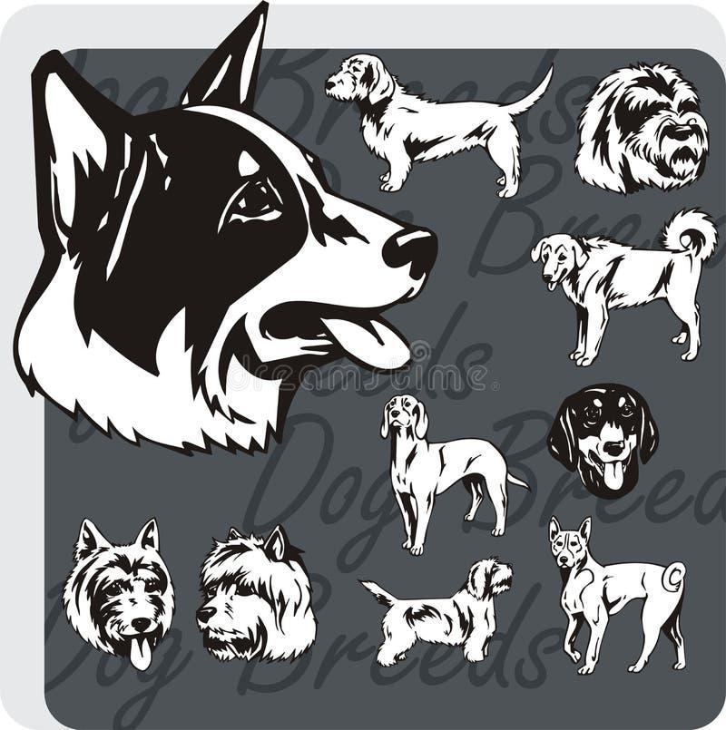 Razze del cane - insieme di vettore royalty illustrazione gratis