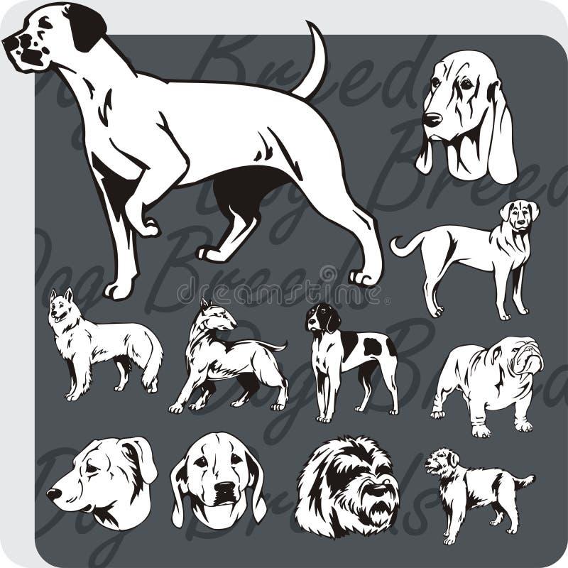 Razze del cane - insieme di vettore illustrazione vettoriale