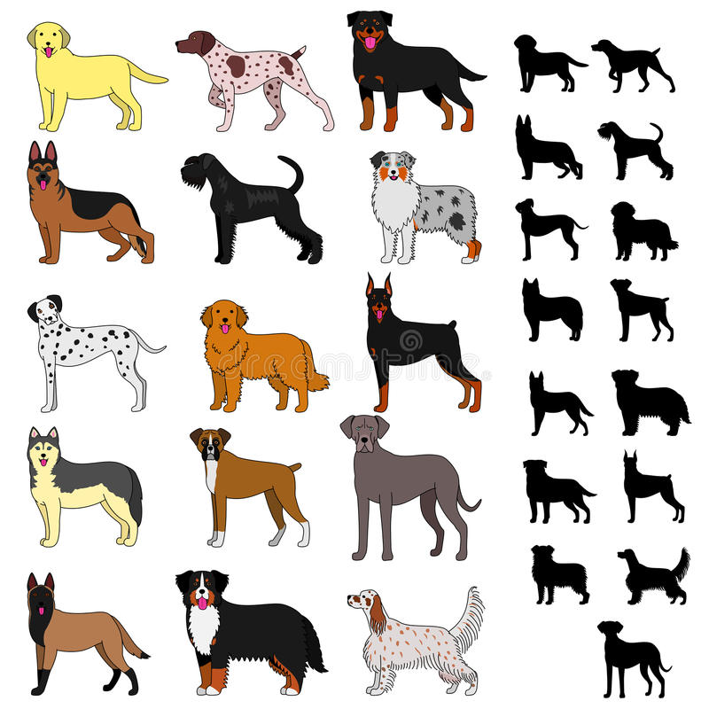 Razze del cane messe royalty illustrazione gratis