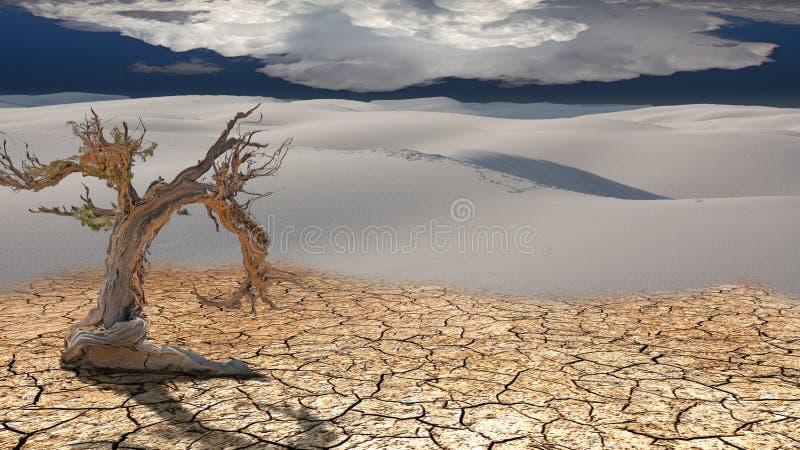 ?rbol muerto en desierto stock de ilustración