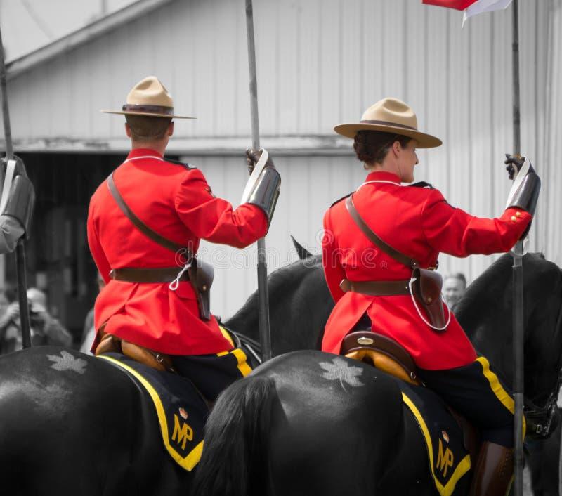 RCMP, paarden en de tatoegering van het esdoornblad stock afbeeldingen