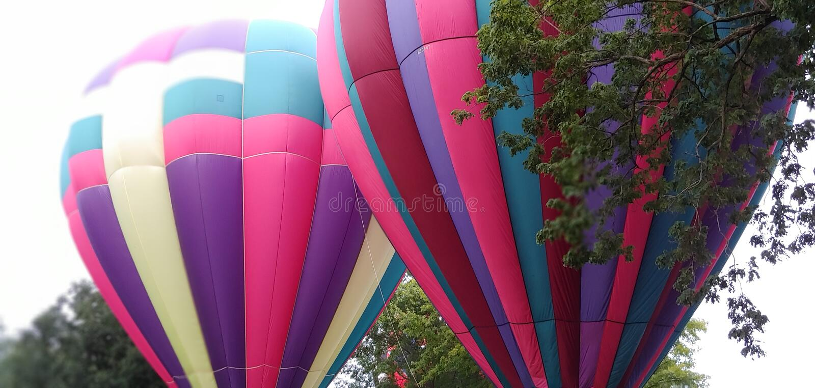 Rdouble trouble pink and puple hot air balloon royalty free stock photo