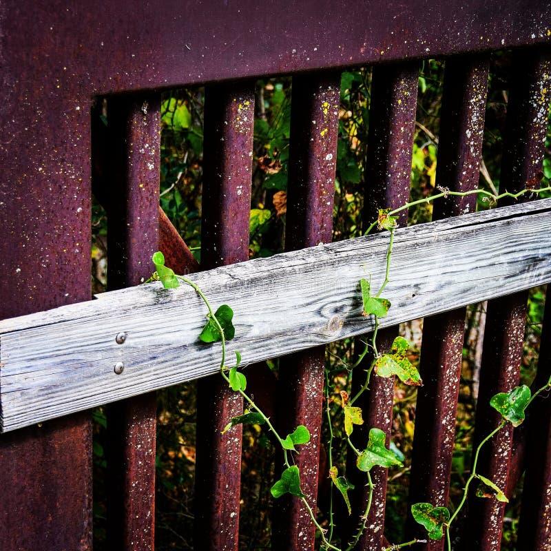 Rdzewiejący żelaza i drewna Bridżowy poręcz zdjęcie stock