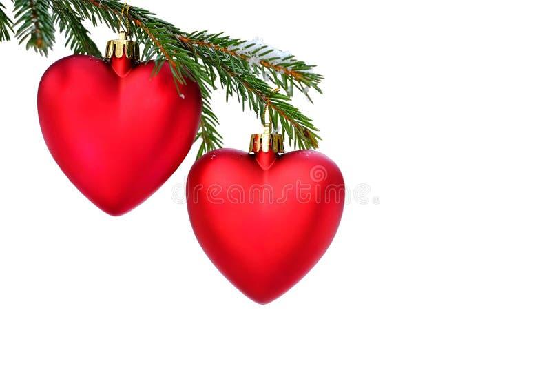 Re забавляется в форме сердца на дереве стоковое изображение rf