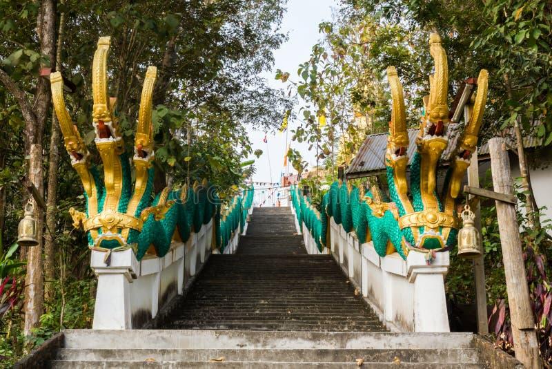 Re dei Nagas con le scale fotografia stock libera da diritti