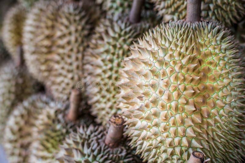 Re del Durian di frutta fotografie stock
