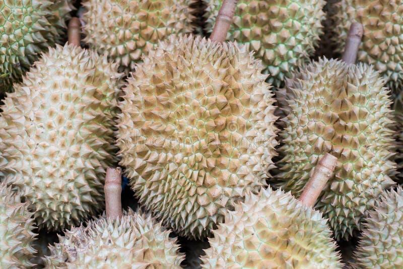 Re del Durian di frutta immagini stock libere da diritti