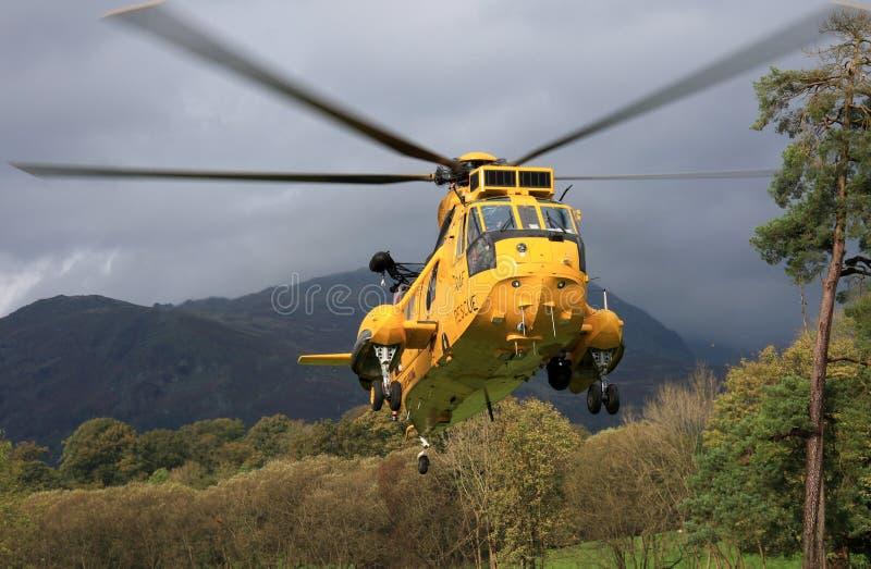 Re di mare elicottero immagini stock