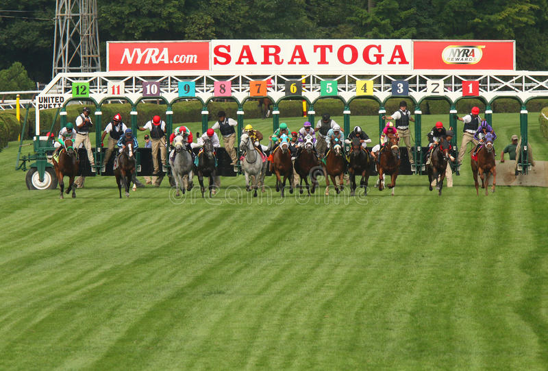 And They're Off Down the Turf Course!. SARATOGA SPRINGS, NY - JUL 19: The field for a turf allowance race breaks from the gate at historic Saratoga Race Course stock image