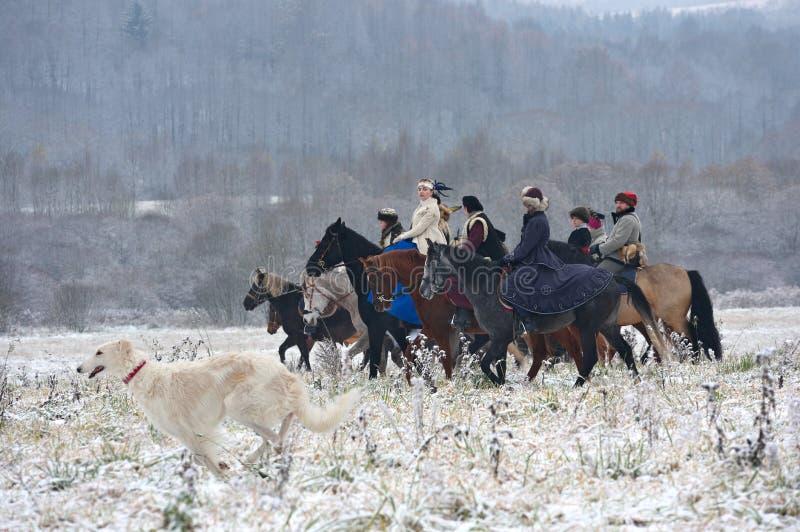 Re-promulgação da caça tradicional com cães caçadores de lobos do russo fotografia de stock