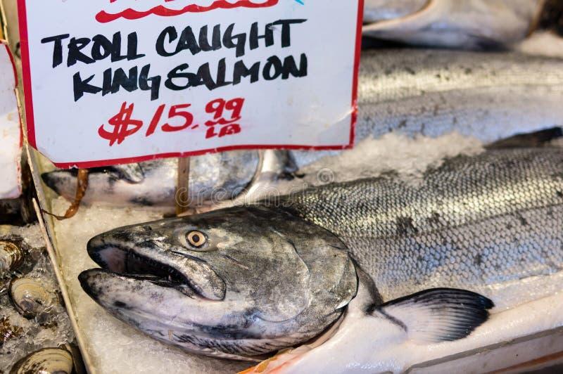 Re Salmon On Ice fotografia stock libera da diritti