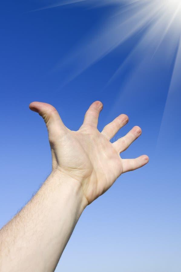 Reach to sun. stock photo