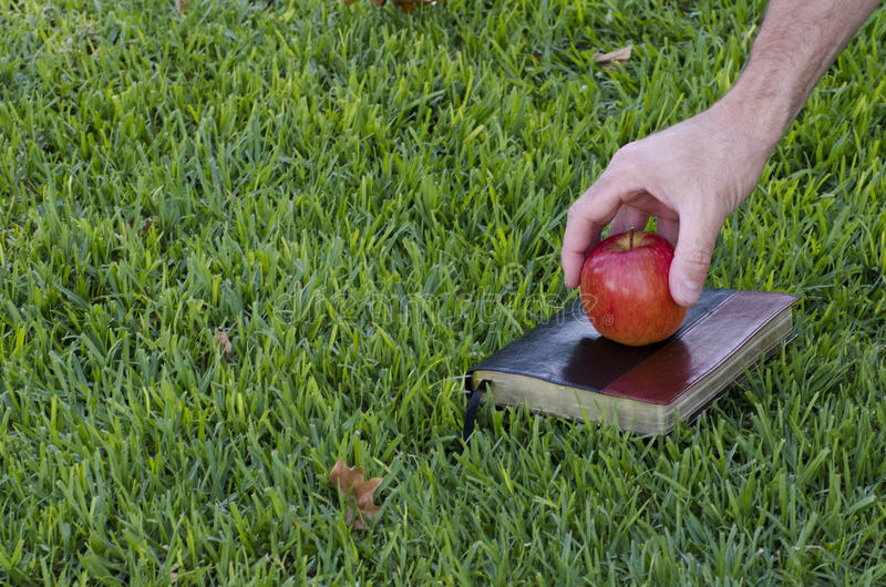 Reaching for the apple. Reaching for apple on book in the grass with room for print space stock photos