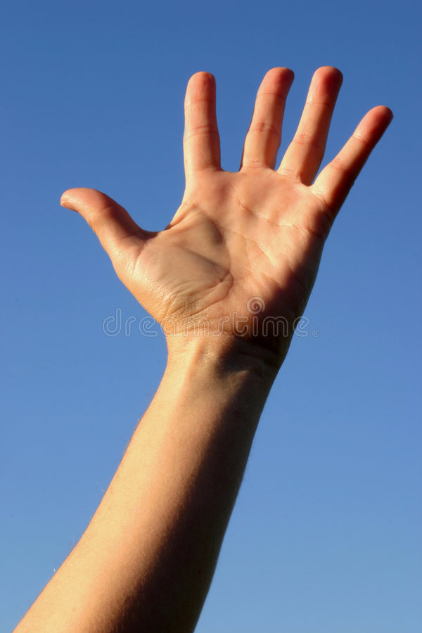 Download Reaching For The Sky Royalty Free Stock Photo - Image: 2781435