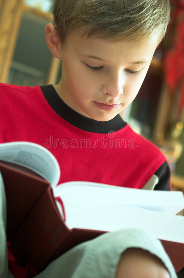 Reading book royalty free stock photography
