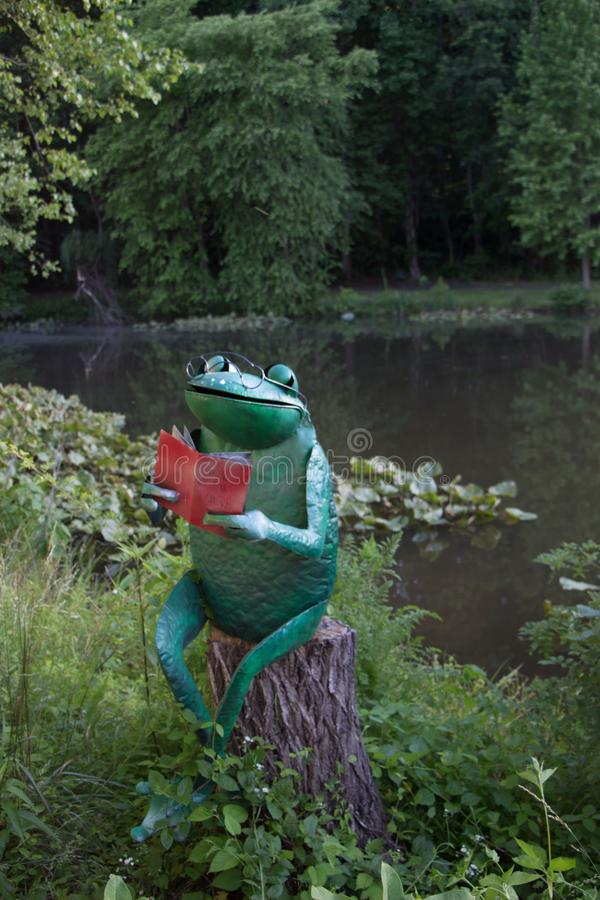 Reading Frog on Tree Stump royalty free stock photography