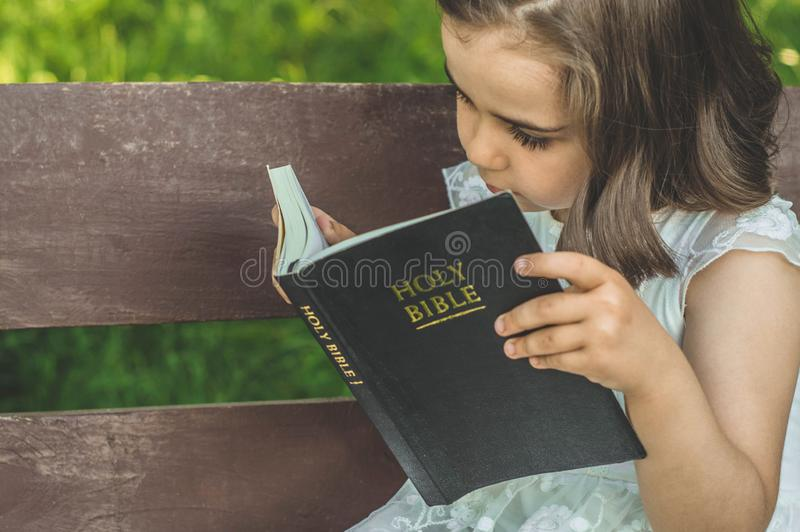 Reading the Holy Bible in outdoors. Christian girl holds bible in her hands sitting on a bench stock photo