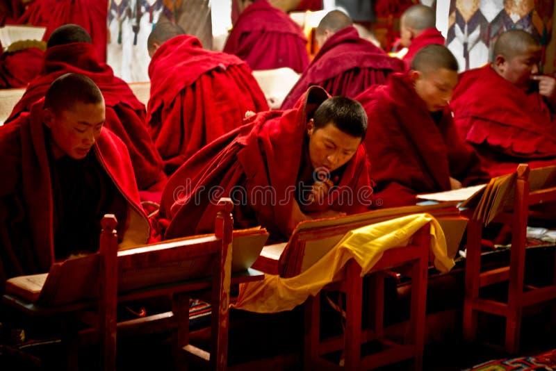 Reading monks of Drepung Monastery Lhasa Tibet stock images
