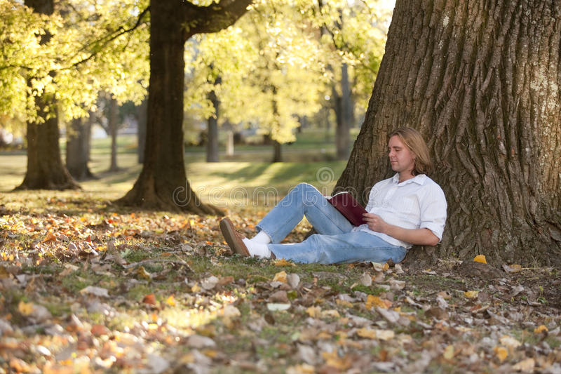 Download Reading outdoors stock photo. Image of nice, wonder, reading - 16763310