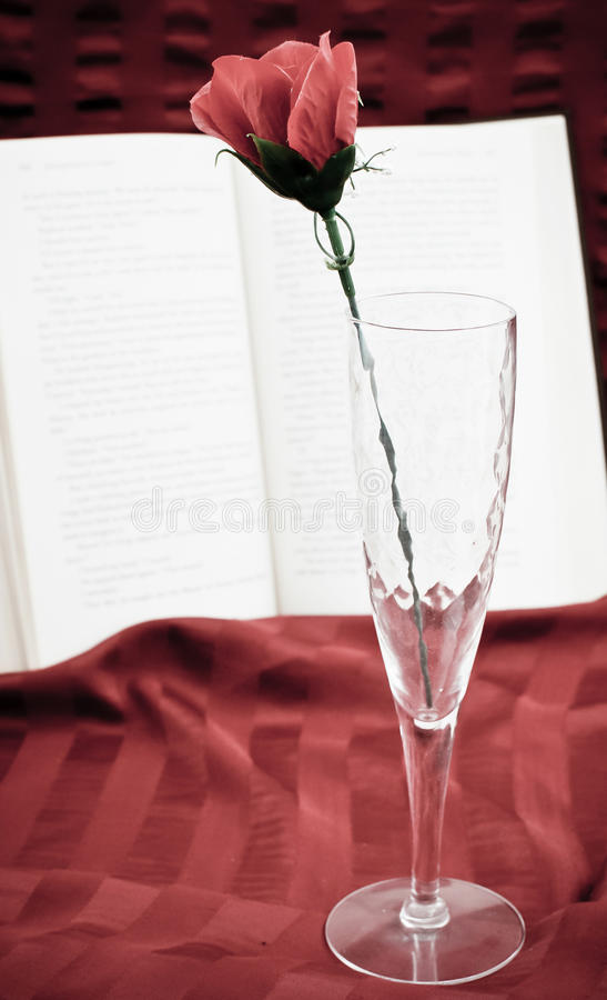 Download Reading Romance stock photo. Image of education, blossom - 24916846