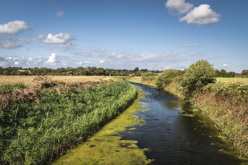 Reading Sewer. The Reading Sewer or Ditch, near Peening Quarter, running across southern Kent in England on a summers day royalty free stock images