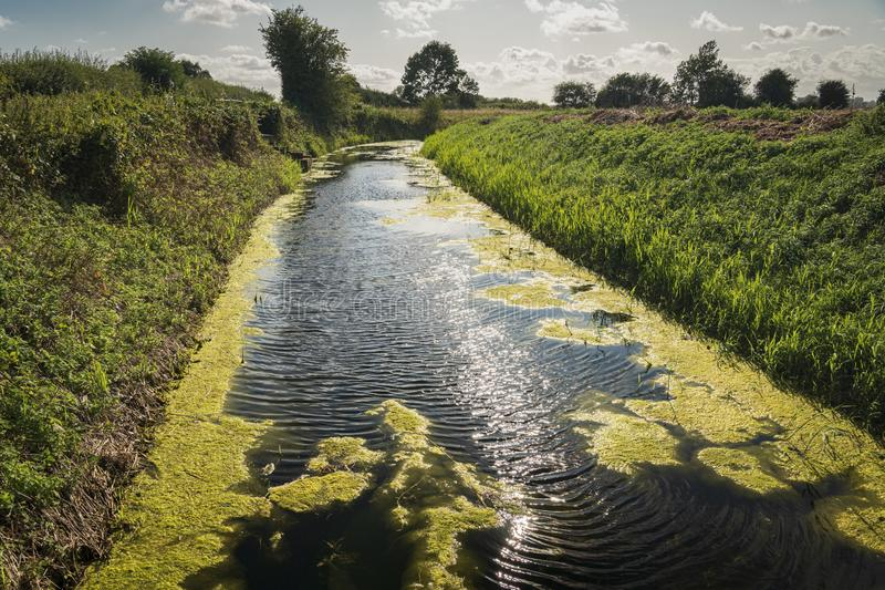 Reading Sewer. The Reading Sewer or Ditch, near Peening Quarter, running across southern Kent in England on a summers day stock image