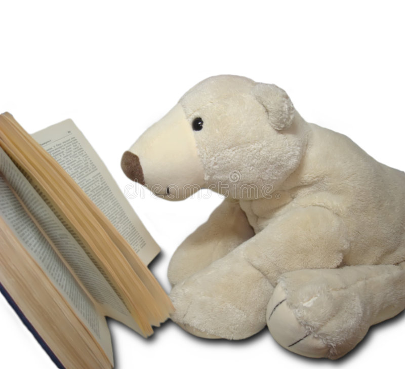 Reading teedy bear. White teddy bear is reading an old book vector illustration