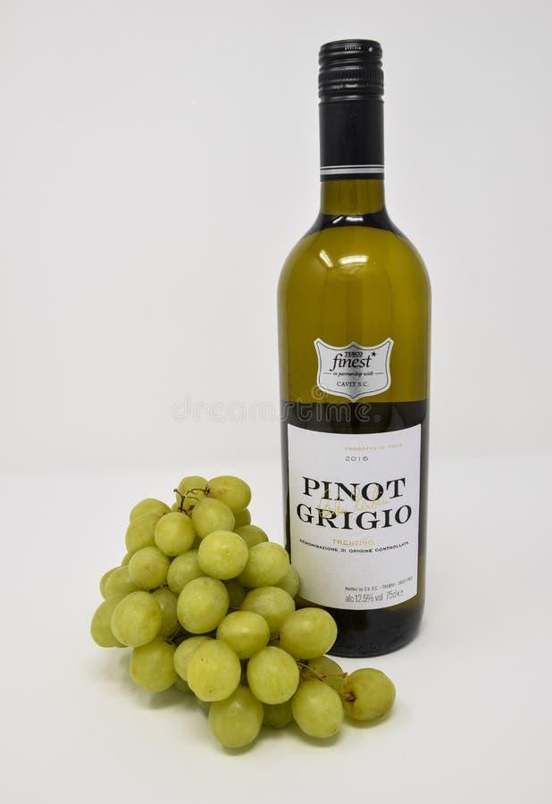 Pinot Grigio White Wine and grapes stock photos