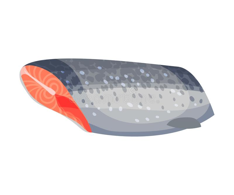Ready to cook carcass trout. Vector illustration on white background. Ready to cook carcass trout without head, fins and tail. Vector illustration on white stock illustration