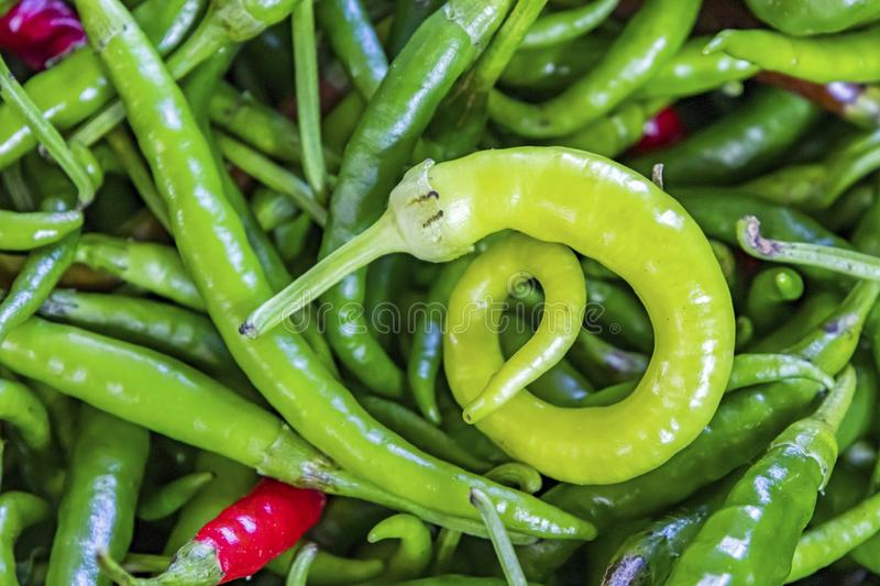 Ready to eat green peppers stock photos