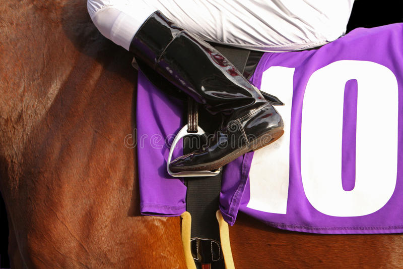 Ready to Race. Close up of jockey's leg in stirrup with purple saddlecloth on horse stock images