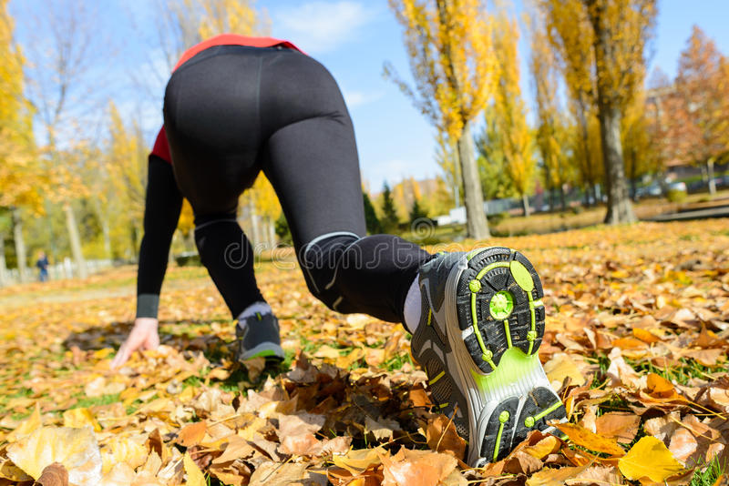 Download Ready to run stock image. Image of autumn, blur, golden - 27820025