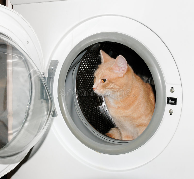 Ready to wash stock photography