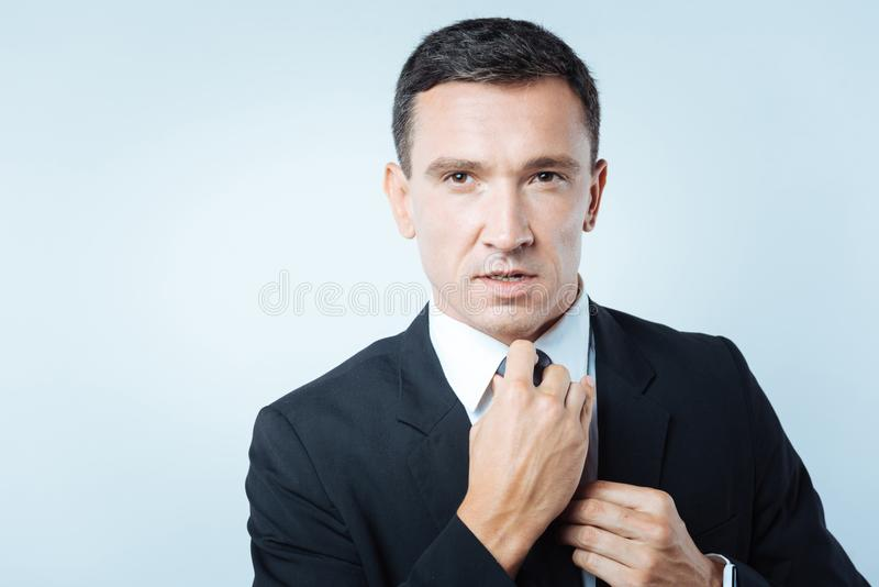Nice handsome businessman fixing a tie royalty free stock image