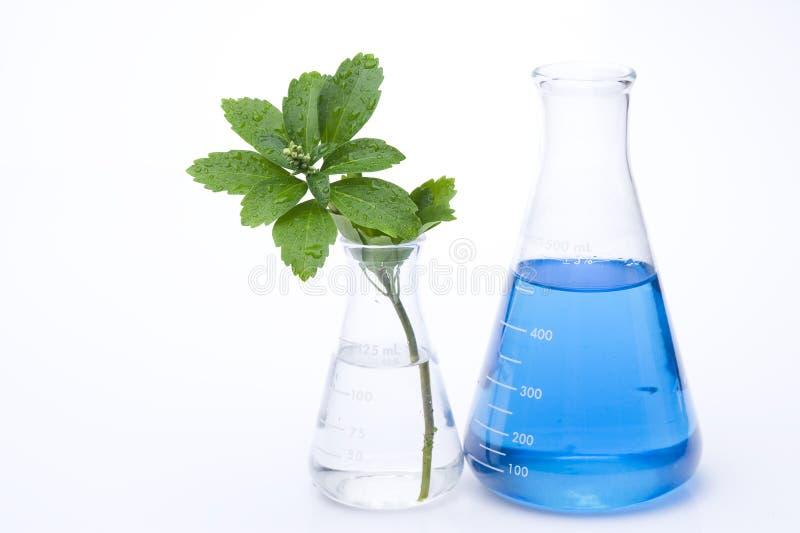 Reagenzglas stockfotos