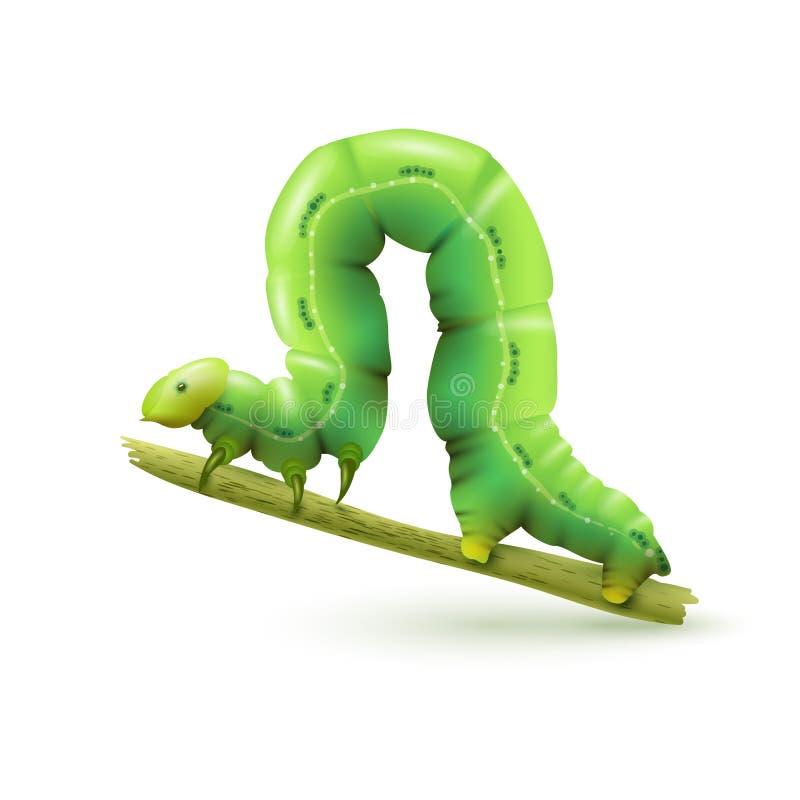Realístico de Caterpillar isolado ilustração royalty free