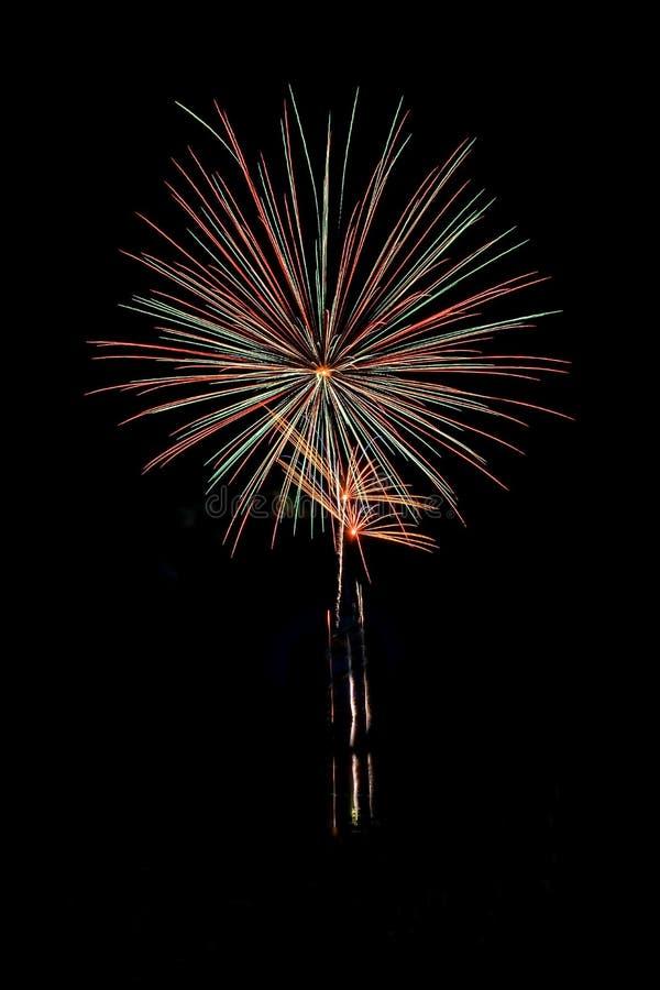 Realów Odosobneni fajerwerki, kwiatu wzór fotografia stock