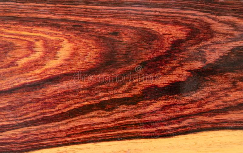 Real Burmese rosewood Exotic wood royalty free stock photos