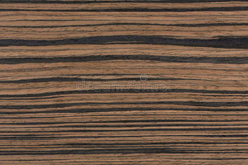 Real ebony wood texture for high impact natural feeling. stock photo