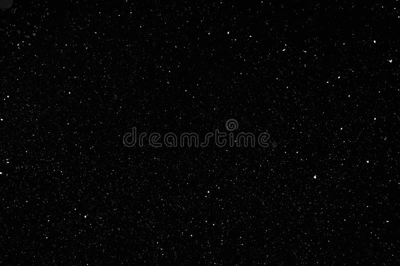 Real falling snow on black background royalty free stock photo
