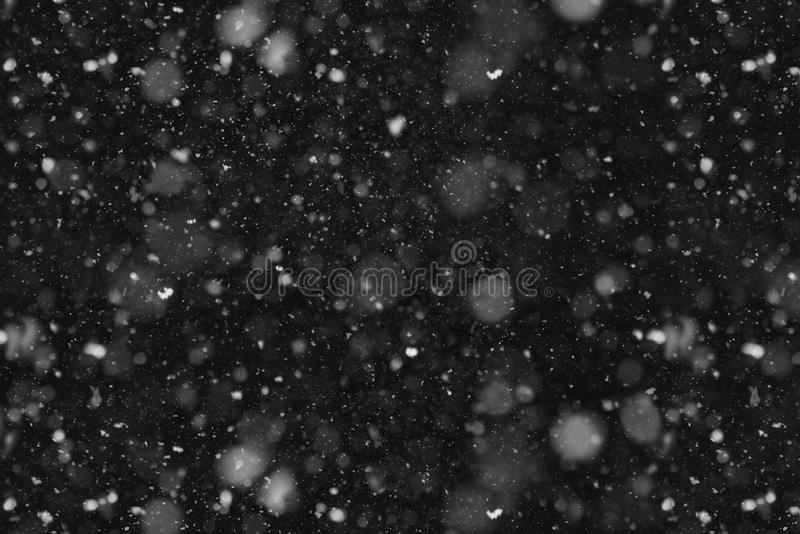 Falling snow abstract stock photo