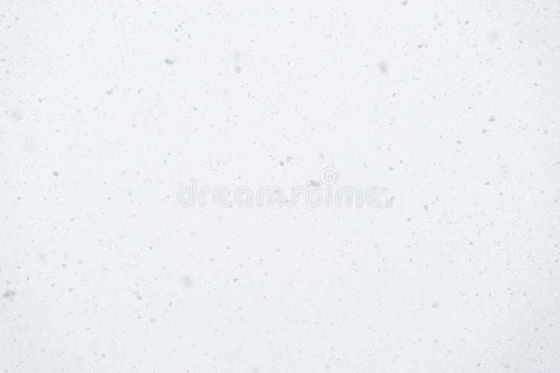 Real falling snowflakes on light background, snowstorm weather, natural snow shower on winter day, soft focus stock photos