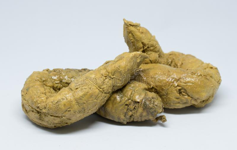 Feces  >> Real Feces On White Background Stock Photo Image Of Dirty Nature