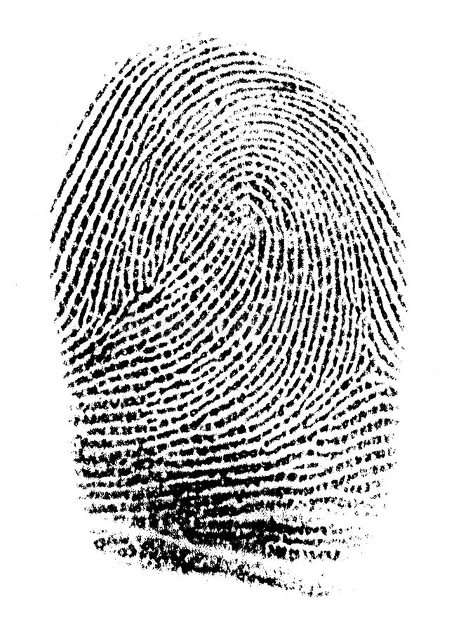 Free Real Fingerprint Royalty Free Stock Images - 36032579