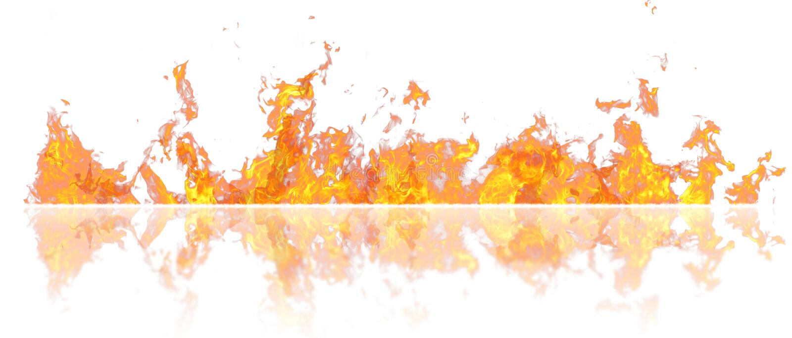 Real line of fire flames with reflection isolated on white background. Mockup on white of wall of fire. royalty free illustration
