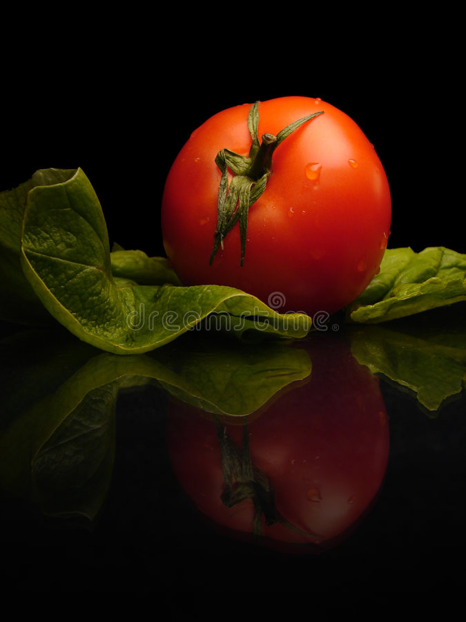 real fresh tomato stock photo