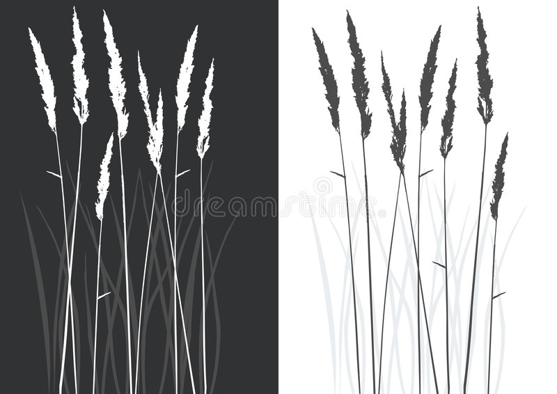 Real grass silhouette stock illustration
