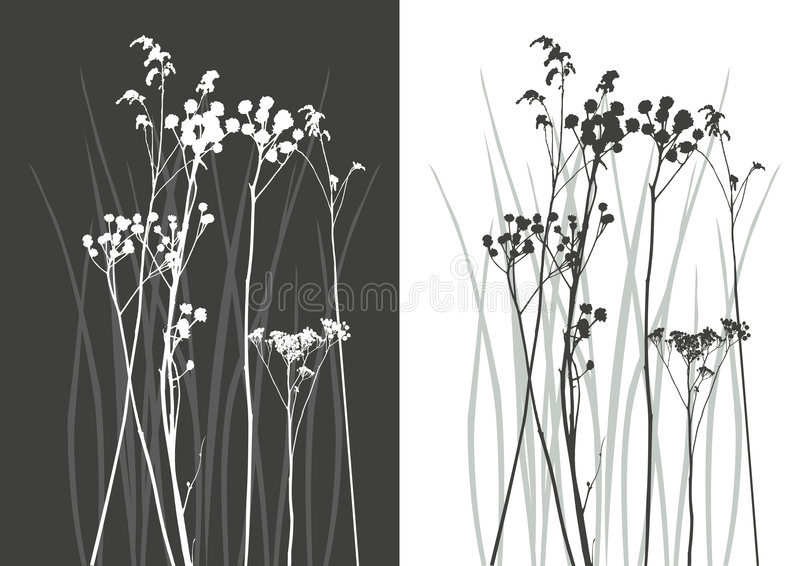 Real grass silhouette - vector royalty free illustration