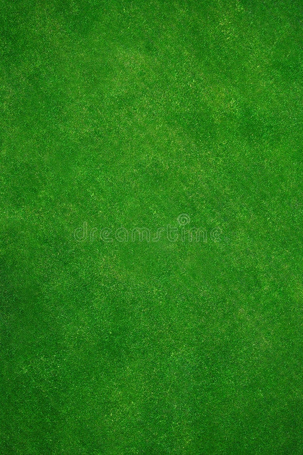 Download Real green grass stock photo. Image of plant, golfcourse - 850660